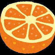 fruit_cut_orange.png