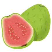fruit_guava.png