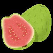 fruit_guava.png