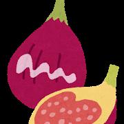 fruit_ichijiku.png