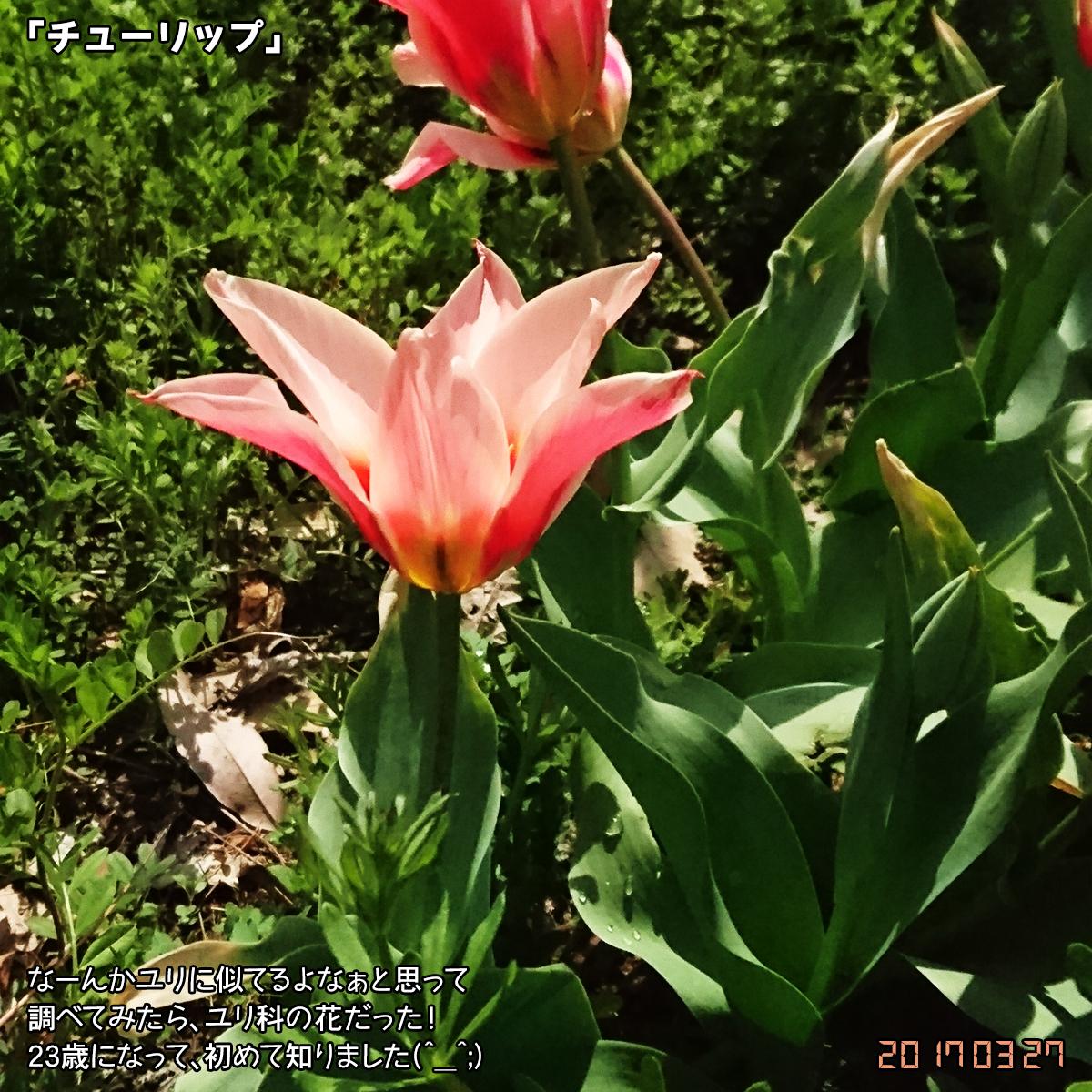 DSC_2120_1.jpg