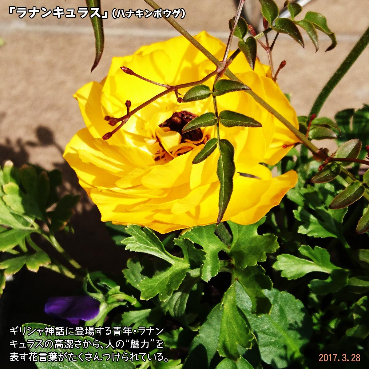 DSC_2147_1.jpg
