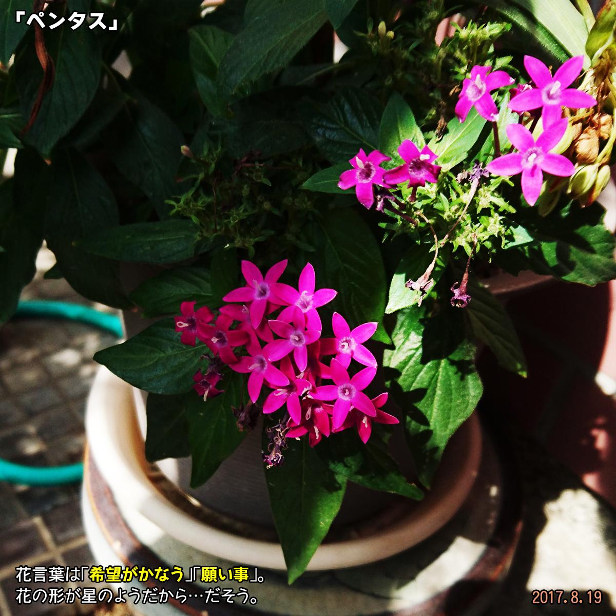 DSC_3547.jpg