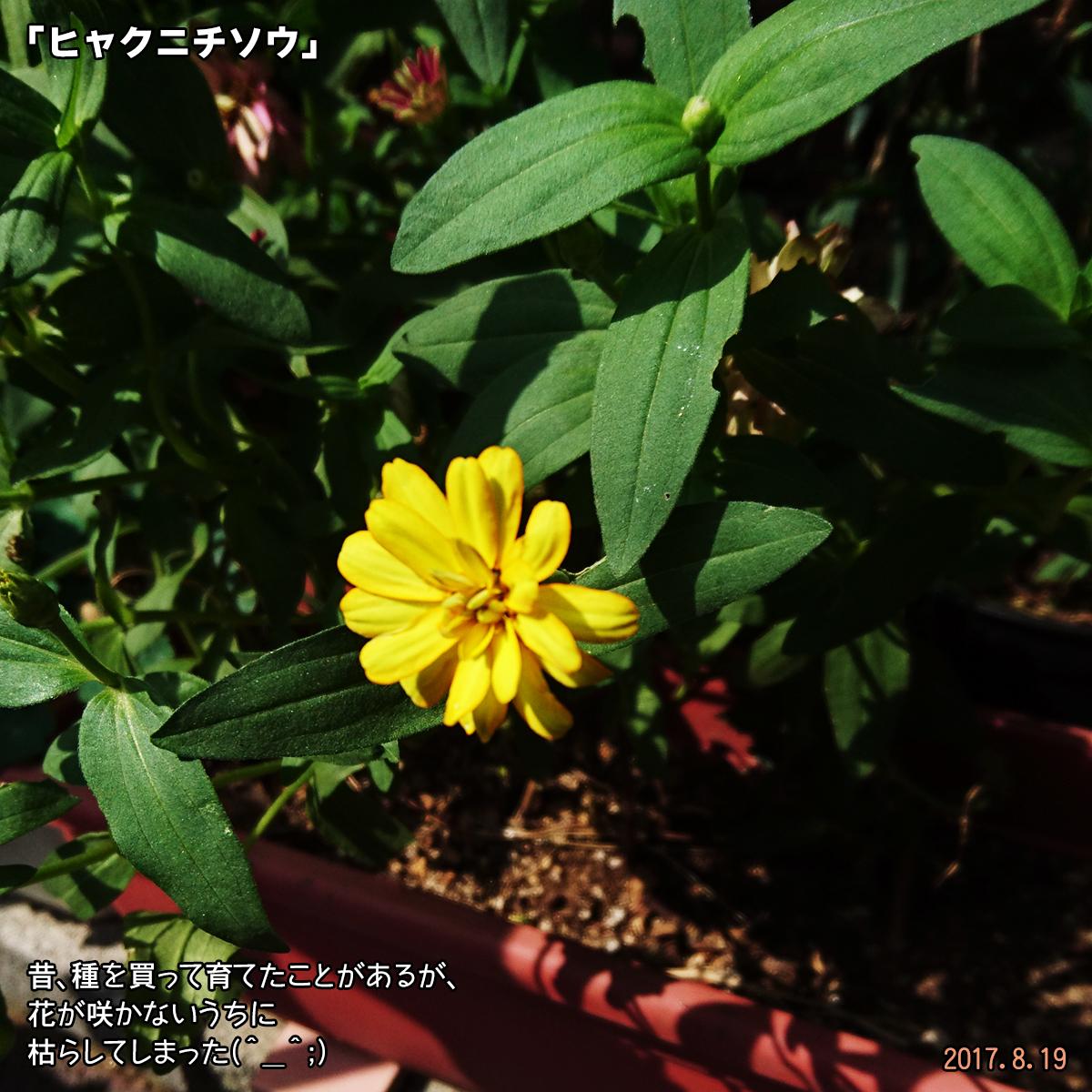DSC_3557.jpg