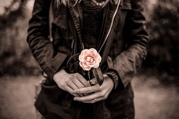 フリー画像・セピアのバラ