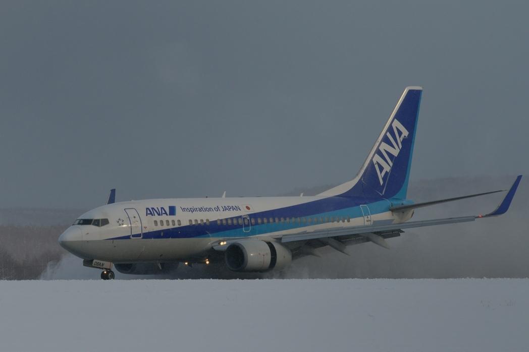 11_262.jpg