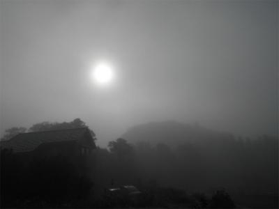 301103霧の朝2
