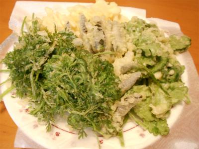 301103野菜天