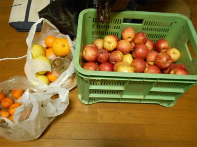 310115貰った果物