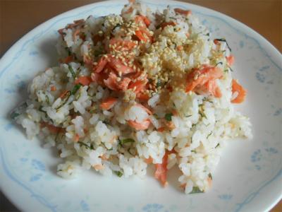310203サケ飯