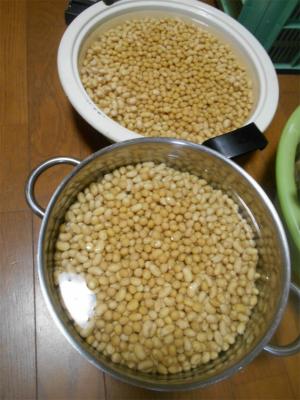 310216味噌作り1