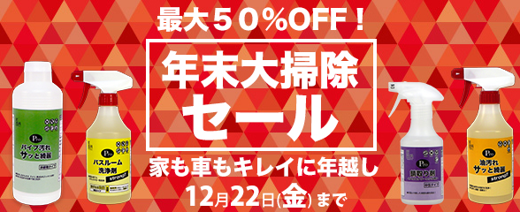 holidaysale17_main.jpg