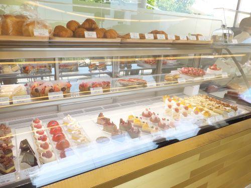 ケーキ DSCF7521 500
