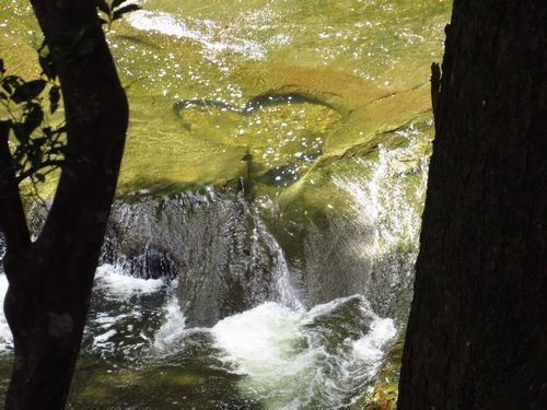 濃溝の滝3