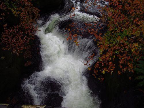 竜頭の滝13