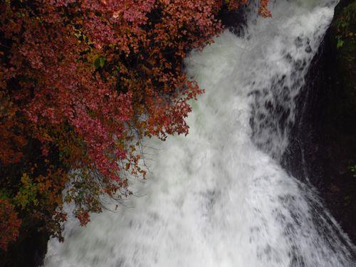 竜頭の滝15
