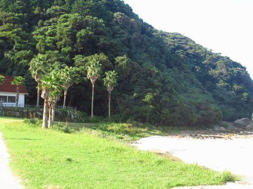 高浜ビーチ9