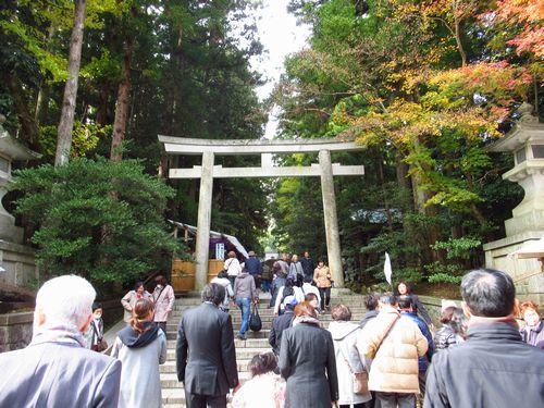 弥彦神社3