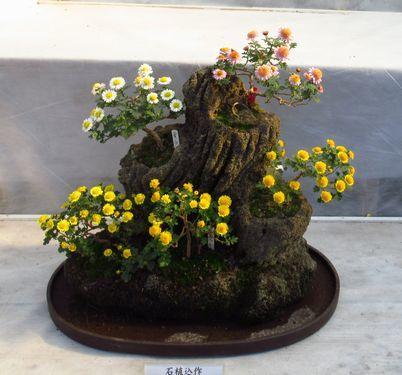 弥彦神社35