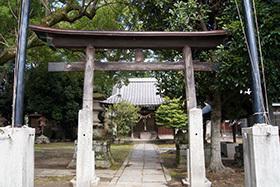 170924箱田神社の御神木⑤