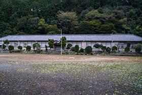 171024鳳来寺ねずの樹⑦