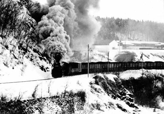 ④紅葉山石炭列車S4903 (550x382)