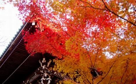 京都紅葉特集_永観堂禅林寺(470x290)