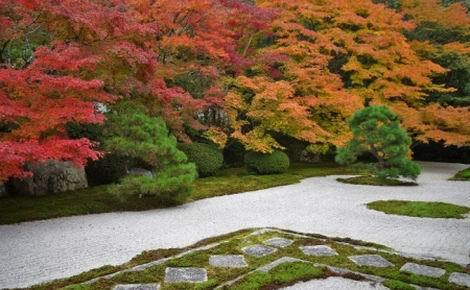 京都紅葉特集_南禅寺天授庵(470x290)