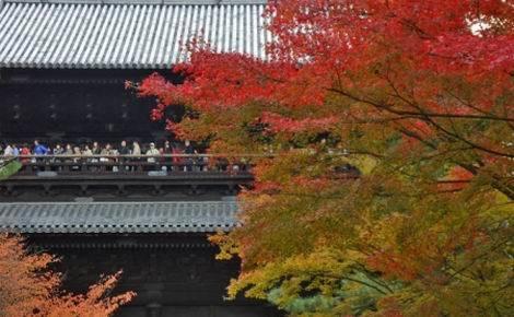 京都紅葉特集_南禅寺(470x290)