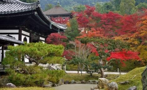 京都紅葉特集_高台寺(470x290)
