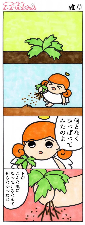 天使ちゃん_雑草171112