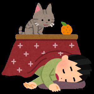 こたつ、寝落ち、猫