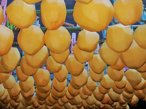 5001干し柿作り1710202