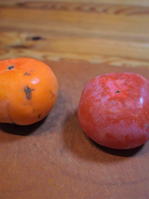 500柿の熟し方1