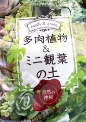 多肉植物・観葉植物の土