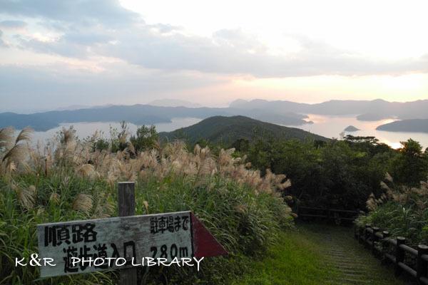 2016年11月5日奄美大島・高知山展望台4