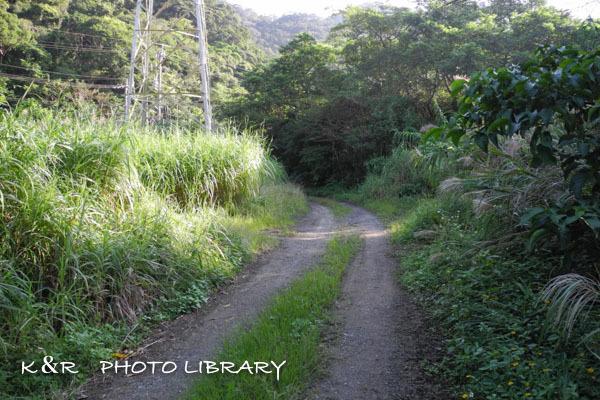 2016年11月6日奄美大島・タンギョの滝1