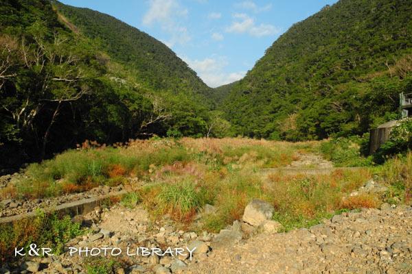 2016年11月6日奄美大島・タンギョの滝2