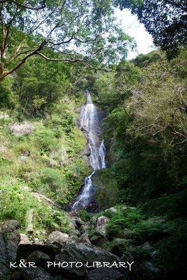 2016年11月6日奄美大島・フナンギョの滝4
