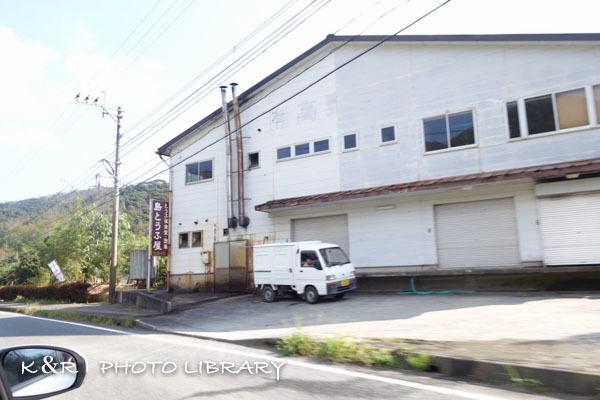 2016年11月6日奄美大島・サン奄美6