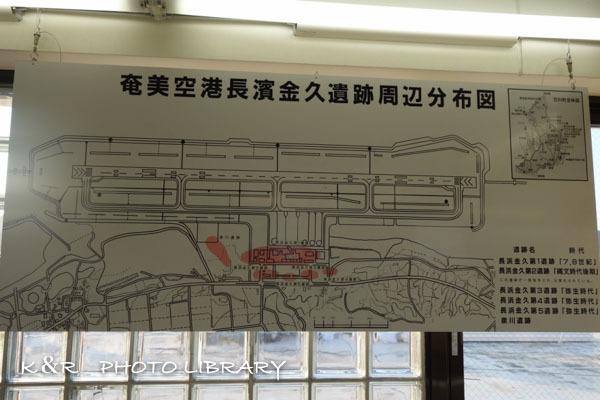 2016年11月6日奄美大島・奄美空港17