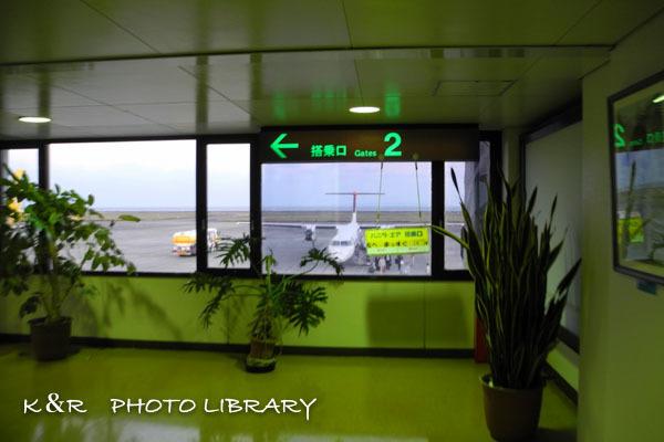 2016年11月6日奄美大島・奄美空港24
