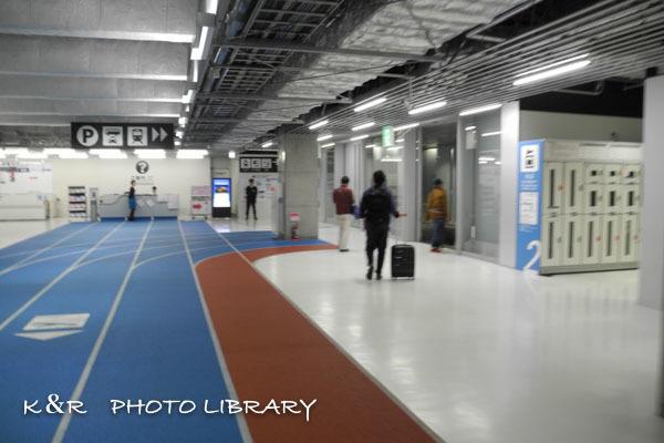 2016年11月6日奄美大島・奄美空港32