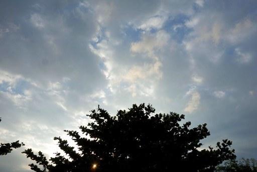 台風22号前-d DSC05895