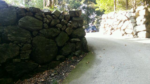唐沢山石垣