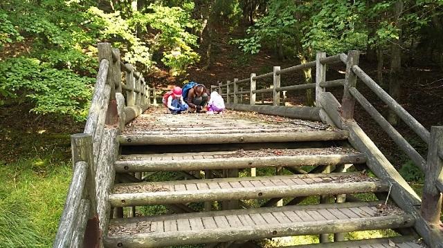 171011 駒ノ尾山~船木山⑮ ブログ用