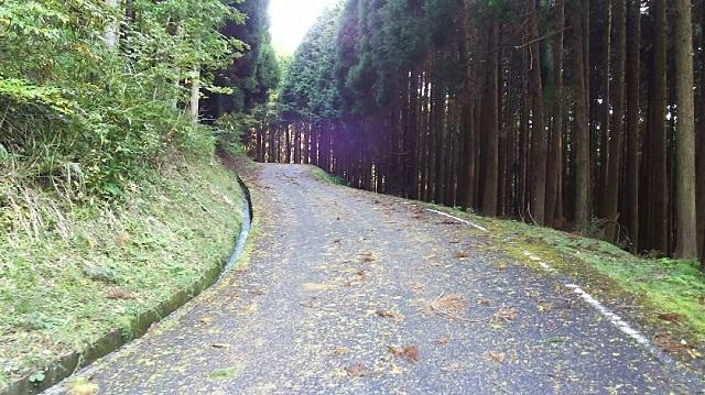 171025 船木山・後山⑩ ブログ用