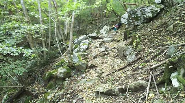 171025 船木山~後山⑨ ブログ用