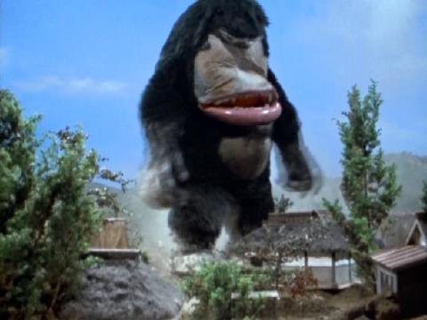 宇宙猿 パッキー