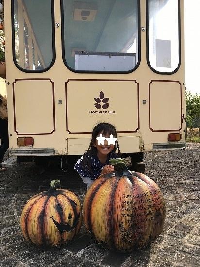 ハーベストハロウィンかぼちゃ